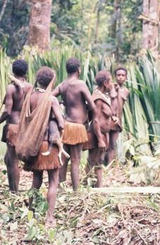 korowai tribe tour