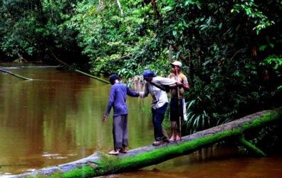 koroway tribe in papua