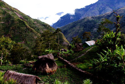 baliem valley west papua