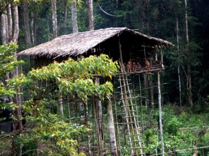Koroway tribe