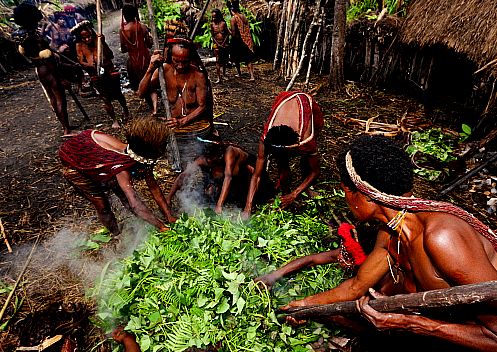 pig feast in baliem valley