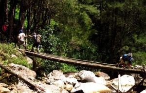 yali trekking in papua