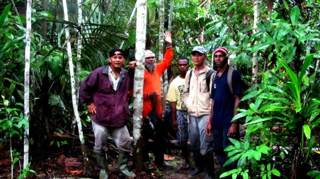 Birding in Foot of Cyclop in Papua