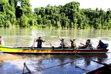 Brazza river Papua