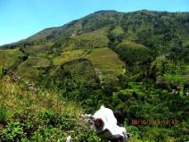 down hill of baliem valley