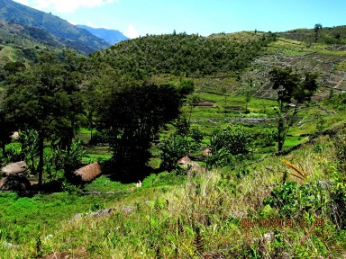 view of south baliem valley