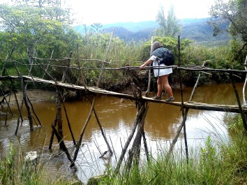 traditional bridge in Baliem valley