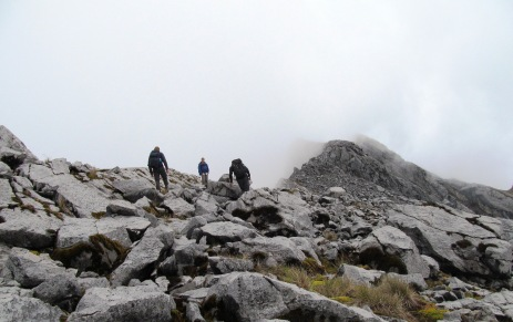 peak of trikora
