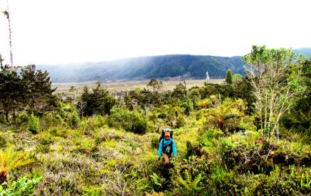 trekking to mt trikora
