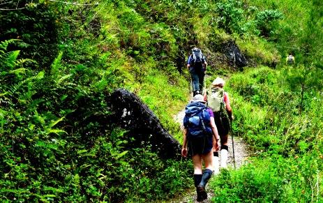 trekking part in baliem valley